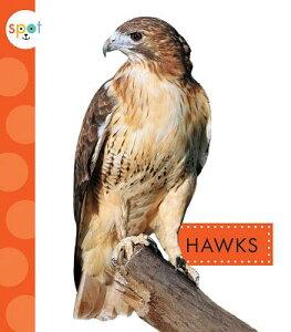 Hawks HAWKS (Spot Backyard Animals) [ Mari C. Schuh ]