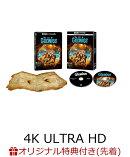 【楽天ブックス限定先着特典】【初回限定生産】グーニーズ 日本語吹替音声追加収録版 <4K ULTRA HD & HDデジタル・…