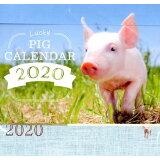 Lucky Pig Calendar ([カレンダー])