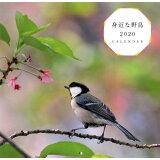 身近な野鳥カレンダー ([カレンダー])