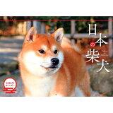 日本の柴犬カレンダー(2020) ([カレンダー])