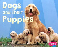 Dogs_and_Their_Puppies