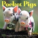 Pocket Pigs Wall Calendar 2018