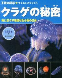 クラゲの秘密