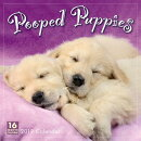 2019 Pooped Puppies 16-Month Wall Calendar: By Sellers Publishing