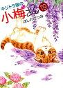 キジトラ猫の小梅さん 19 (ねこぱんちコミックス) [ ほしの なつみ ]