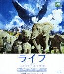 ライフ いのちをつなぐ物語 スタンダード・エディション【Blu-ray】