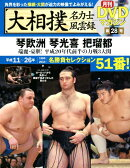大相撲名力士風雲録(28)