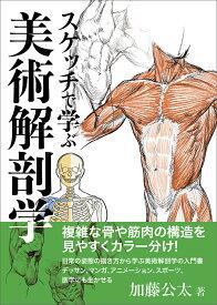 スケッチで学ぶ美術解剖学 [ 加藤 公太 ]