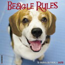 Beagle Rules 2018 Wall Calendar (Dog Breed Calendar)