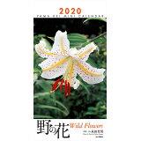 野の花ミニカレンダー(2020) ([カレンダー])