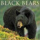 Black Bears 2018 Wall Calendar
