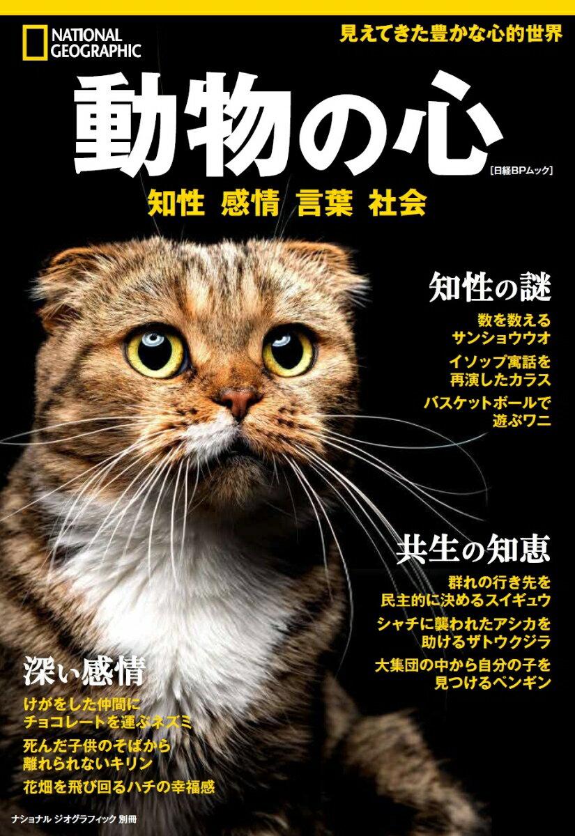 動物の心 知性・感情・言葉・社会 (日経BPムック ナショナルジオグラフィック別冊)