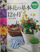 鉢花の基本12か月