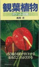 【バーゲン本】観葉植物ーポケット図鑑