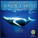 New Earth 2019 Wall Calendar: By Eckhart Tolle
