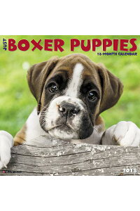 JustBoxerPuppies2018WallCalendar(DogBreedCalendar)CAL2018-JUSTBOXERPUPPIESWA[WillowCreekPress]