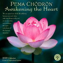 Pema Chodron 2019 Wall Calendar: Awakening the Heart