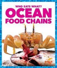 OceanFoodChains[RebeccaPettiford]