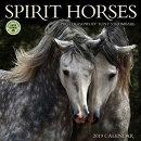 Spirit Horses 2019 Wall Calendar: Photographs by Tony Stromberg