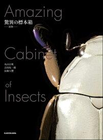 驚異の標本箱 -昆虫ー [ 丸山 宗利 ]