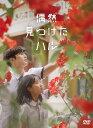 偶然見つけたハル DVD-BOX1 [ キム・ヘユン ]