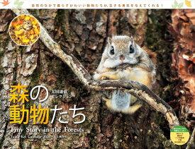 太田達也セレクション森の動物たちTiny Story in the Forest(2020) ([カレンダー])