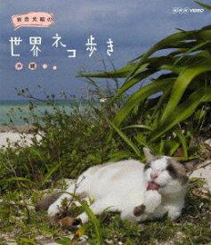 岩合光昭の世界ネコ歩き 沖縄【Blu-ray】 [ (ドキュメンタリー) ]