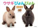 ウサギぴょんぴょんカレンダー(2020)