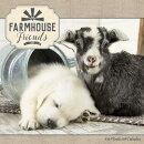 Farmhouse Friends Wall