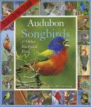 Audubon Songbirds & Other Backyard Birds Picture-A-Day Wall Calendar