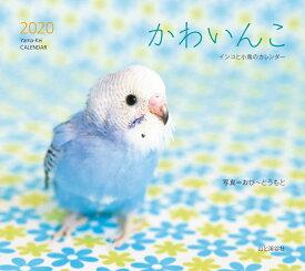 かわいんこ インコと小鳥のカレンダー(2020) ([カレンダー])