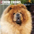 Just Chow Chows 2018 Wall Calendar (Dog Breed Calendar)
