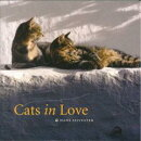 Cats in Love [洋書]