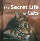 The Secret Life of Cats [洋書]