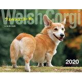 ウェルシュ・コーギーカレンダー(2020) ([カレンダー])