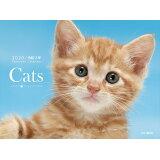 Cats ([カレンダー])