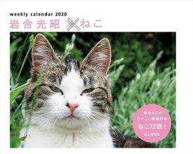 カレンダー2020 岩合光昭×ねこ (ヤマケイカレンダー2020) [ 岩合 光昭 ]