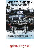 【先着特典】Wolf Complete Works VI 〜Chasing the Horizon Tour 2018 Tour Final in Hanshin Koshien Stadium〜(ステッカー付き)