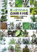 【謝恩価格本】葉っぱでわかる造園樹木図鑑 造園技能検定に出題される170樹種を掲載