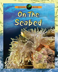 On_the_Seabed