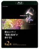 "NHKスペシャル 人体 神秘の巨大ネットワーク 第2集 驚きのパワー!""脂肪と筋肉""が命を守る【Blu-ray】"