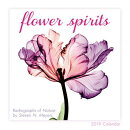 2019 Flower Spirits Radiographs of Nature by Steven N. Meyers Mini Calendar: By Sellers Publishing
