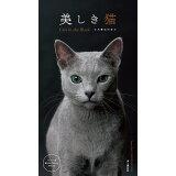 美しき猫Cats in the Blackカレンダー(2020) ([カレンダー])