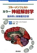 ブルーメンフェルト カラー神経解剖学
