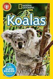 Koalas KOALAS (Readers) [ Laura Marsh ]