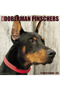 JustDobermans2018WallCalendar(DogBreedCalendar)CAL2018-JUSTDOBERMANSWALLC[WillowCreekPress]