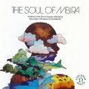 <ジンバブエ>ショナ族のムビラ 〜アフリカン・ミュージックの真髄1