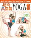 筋肉図解YOGA イラスト解説で働く筋肉がよくわかる (ブティックムック) [ アビゲイル・エルスウォース ]