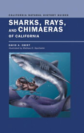 Sharks, Rays, and Chimaeras of California SHARKS RAYS & CHIMAERAS OF CAL (California Natural History Guides) [ David Ebert ]